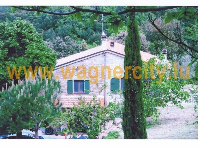 Image 3686/2